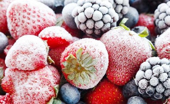 Tủ đông Alaska BD-2099N 200 lít 1 ngăn đông bảo quản thực phẩm tốt