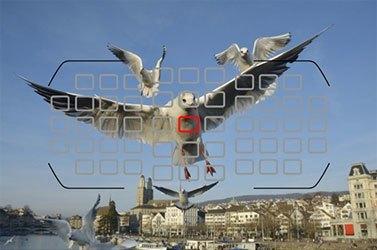 Mua máy ảnh chuyên nghiệp loại nào tốt, Nikon D7200 ống kính 18-200 VR