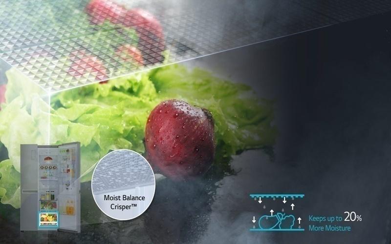 Tủ lạnh có ngăn cân bằng độ ẩm với lưới mắt cáo
