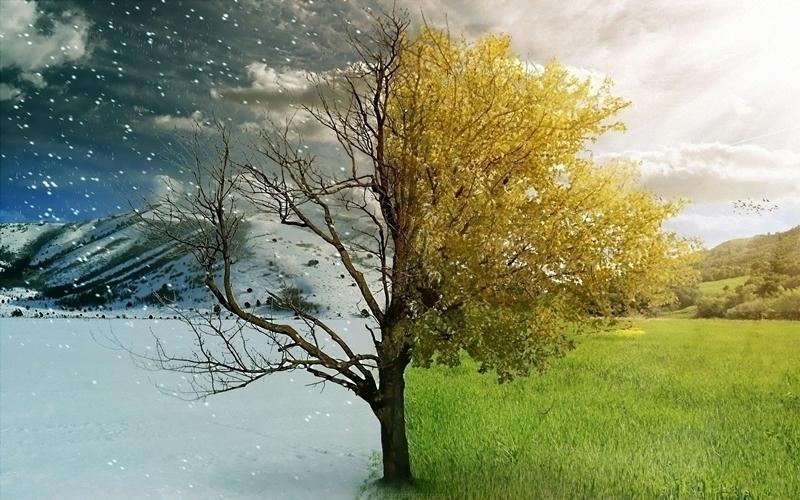 Chế độ Dry chỉ phù hợp vào các mùa ẩm ướt, có độ ẩm cao