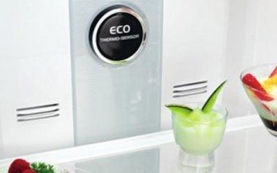 Tủ lạnh Hitachi R-T310EG1 260 lít bạc làm lạnh nhanh