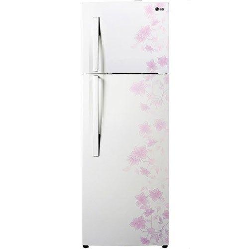 Tủ lạnh LG GN-L222BF 209 lít giá tốt tại nguyenkim.com
