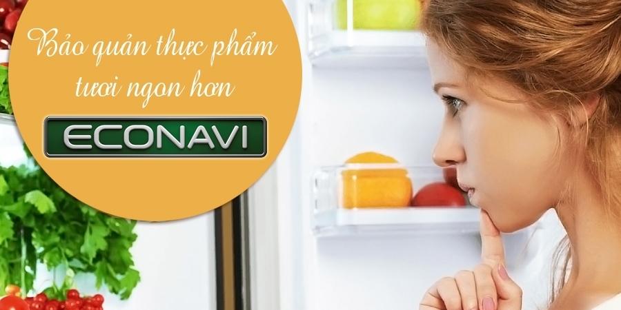 Tủ lạnh Panasonic 255 lít NR-BV288GKVN có cảm biến Econavi