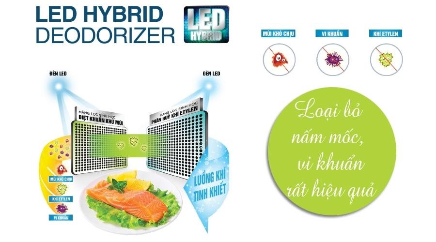 Tủ lạnh Toshiba 546 lít GR-WG58VDAZ xanh diệt khuẩn và khử mùi tốt