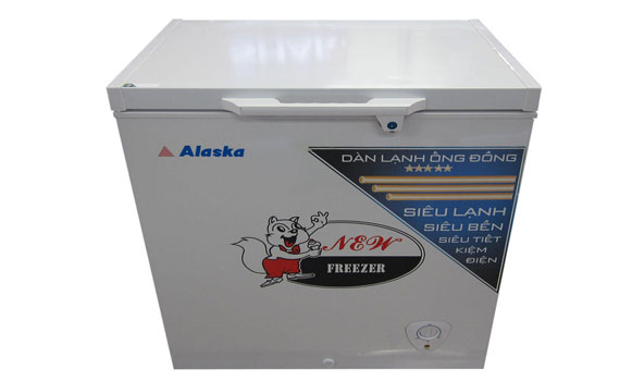 Thiết kế tiện lợi trên tủ đông ALaska BD-300C