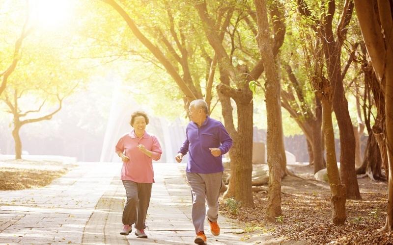 Công viên là nơi tập thể dục tốt nhất