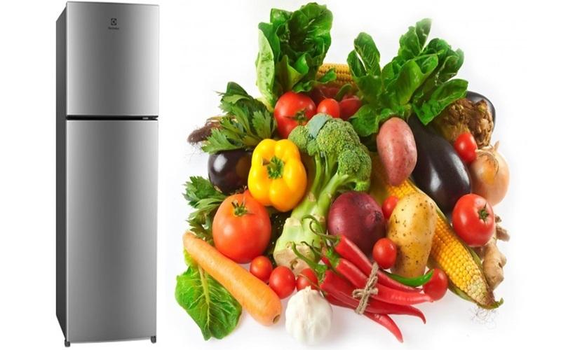 Khả năng dự trữ và giữ thức ăn luôn tươi ngon hơn với tủ lạnh Electrolux ETB2102MG