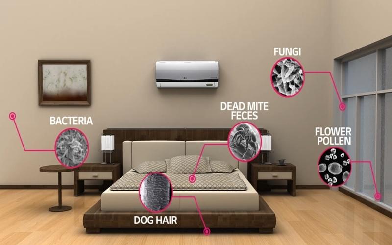 Vi khuẩn luôn ẩn nấp xung quanh trong nhà bạn