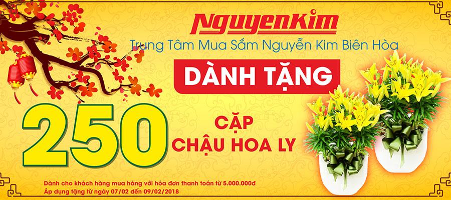 Có hoa ly Nguyễn Kim tặng, nhà bạn tự khắc thêm màu sắc và thơm lừng hương hoa