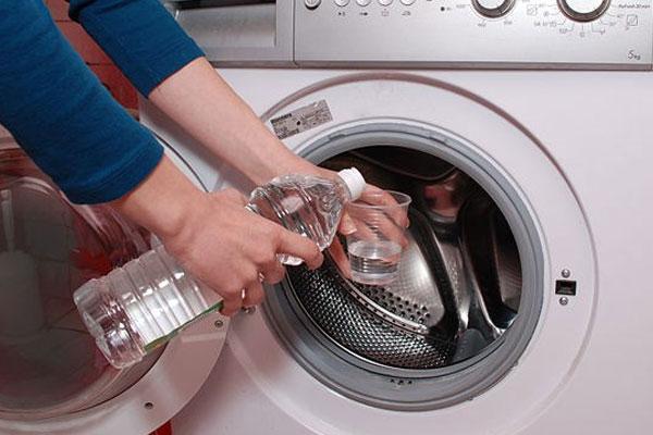 Lồng giặt bẩn sẽ ảnh hưởng đến sức khỏe của các thành viên gia đình bạn