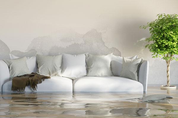 Thời tiết đang mùa mưa bão, các thiết bị bị vào nước nên xử lý thế nào?