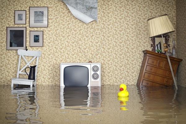 TV vào nước có thể sửa chữa được