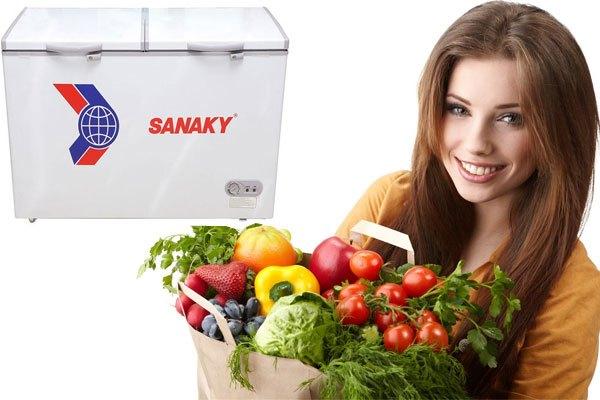 Tủ đông Sanaky thiết kế hiện đại