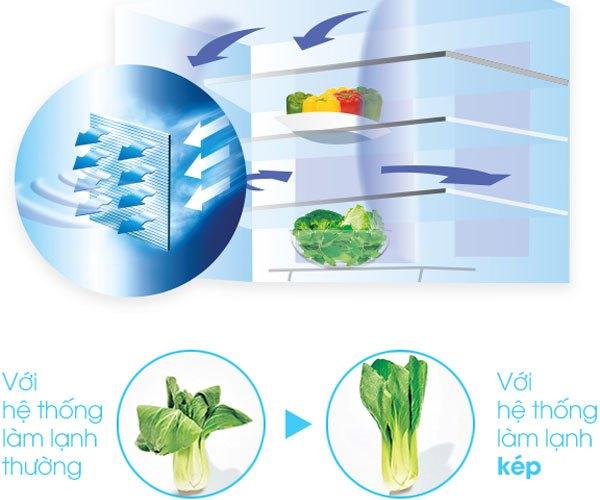 Rau củ sẽ không mau héo úa khi dùng hệ thống làm lạnh của tủ lạnh Sharp