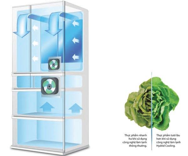 Thực phẩm tươi ngon nhờ vào tủ lạnh Sharp