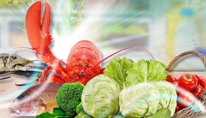 Ngăn trữ lạnh trên tủ lạnh AquaAQR-IP285ANbảo quản thực phẩm tốt hơn