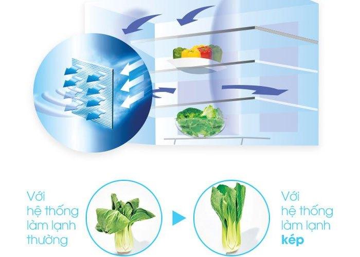 Công nghệ làm lạnh kép trên tủ lạnh Sharp duy trì độ ẩm tốt,khắc phục việc héo úa thực phẩm khi gió của ngăn đông tràn sang