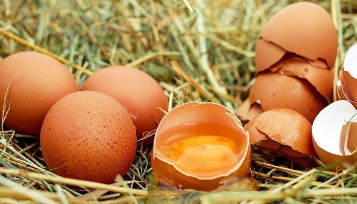 Trứng sẽ vỡ nếu bỏ trong tủ đông