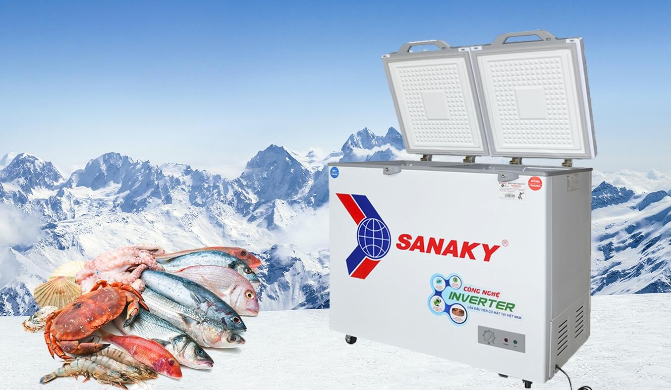 Tủ đông Sanaky Inverter 220 lít VH-2899W4K -