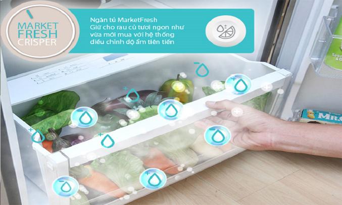 Tủ lạnh Electrolux 260 lít EBB2600BG có ngăn rau củ MarketFresh