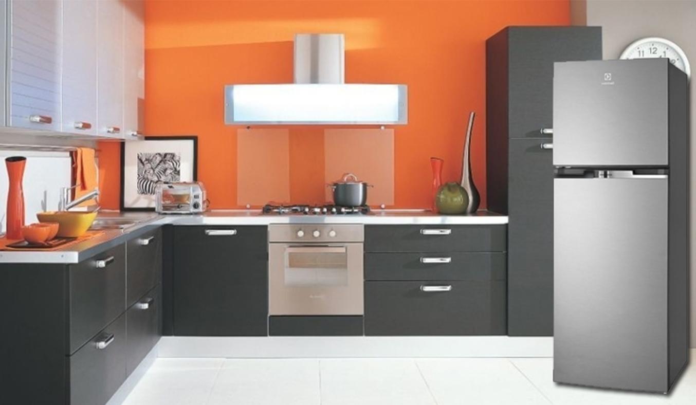 Tủ lạnh Electrolux ETB2100MG 231 lít dễ vệ sinh