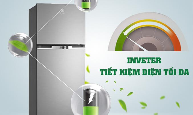 Tủ lạnh Electrolux ETB2600MG tiết kiệm