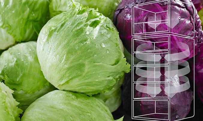 Tủ lạnh Electrolux Inverter 260 lít ETB2802J-H Công nghệ làm lạnh nhiệt EvenTemp