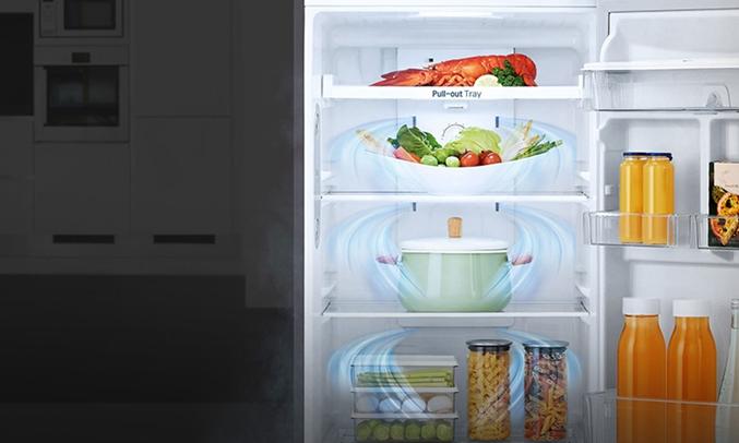 Tủ lạnh LG 315 lít GN-L315PS giúp thực phẩm luôn tươi ngon