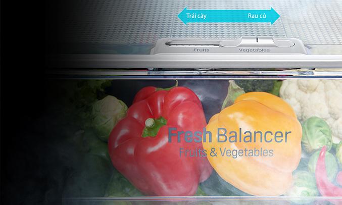 Tủ lạnh LG 601 lít GR-X247JS duy trì độ ẩm