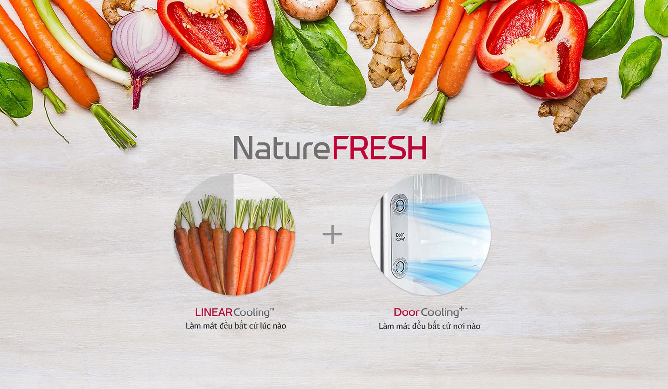 Tủ lạnh GN-L602S làm lạnh đồng đều