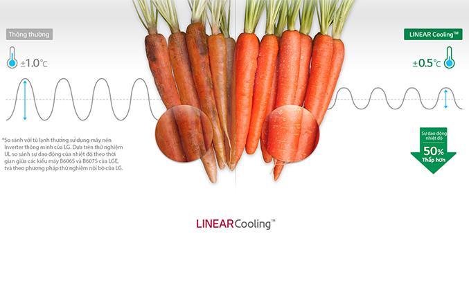 Tủ lạnh LG 506 lít GN-L702GB giữ ẩm tốt hơn