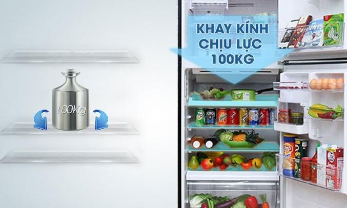 Tủ lạnh có khay kính chịu lực bền bỉ, linh hoạt