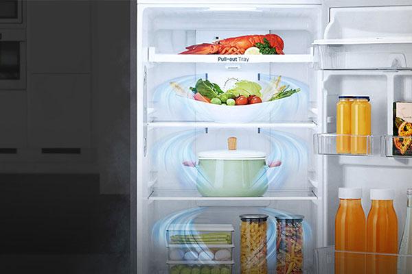 Bên cạnh Linear Inverter, tủ lạnh LG GN-L208PS còn sở hữu luồng không khí lạnh đa chiều, làm lạnh đều và hiệu quả, bảo quản thực phẩm luôn tươi