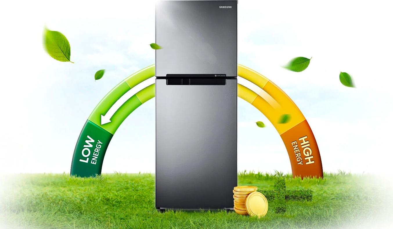 Tủ Lạnh Samsung Inverter 208 lít RT19M300BGS -