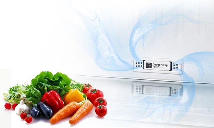 Tủ lạnh Samsung 208L RT20K300ASE kháng khuẩn khử mùi vượt trội