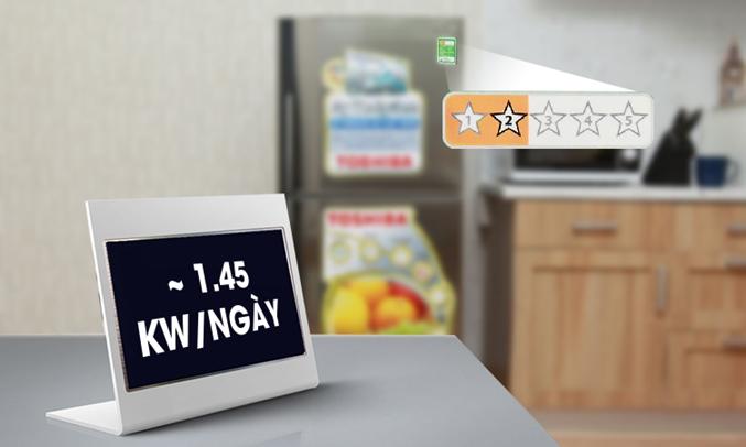 ủ lạnh Toshiba GR-S19VPP tiết kiệm điện