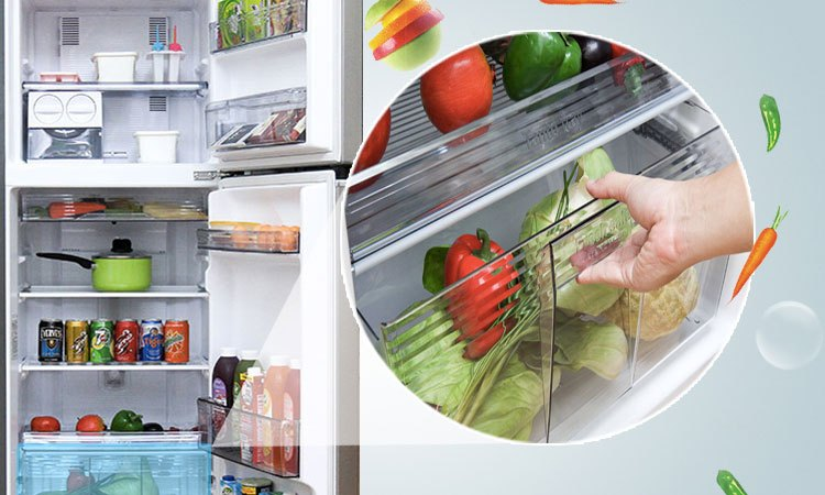 Tủ lạnh Panasonic 238 lít NR-BL267VSV1 rau củ quả xanh tươi