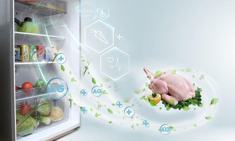 Tủ lạnh PANASONIC 271 lít NR-BL308PSVN khử mùi hôi vượt trội