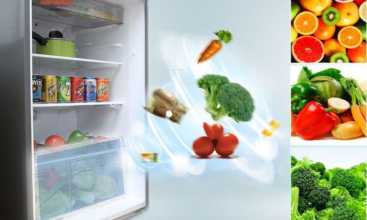 Tủ lạnh PANASONIC 271 lít NR-BL308PSVN giữ rau củ quả xanh tươi