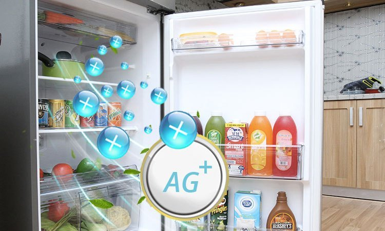 Tủ lạnh PANASONIC 307 lít NR-BL348PSVN khử mùi hôi vượt trội
