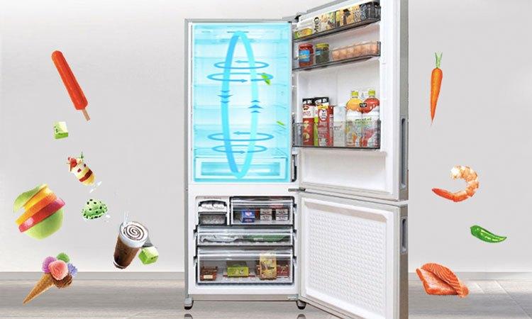 Tủ lạnh PANASONIC 363 lít NR-BX418VSVN thực phẩm được bảo quản tươi ngon lâu ngày