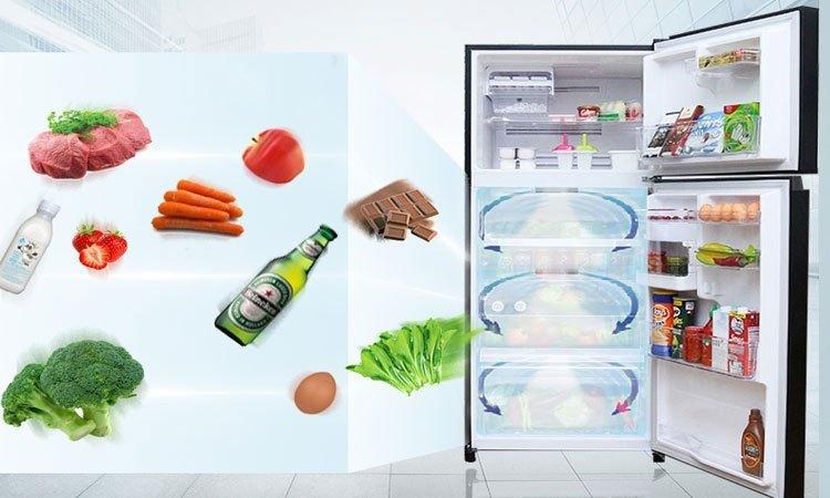 Tủ lạnh Toshiba 305 lít GR-MG36VUBZ (XK) bảo quản thực phẩm tươi ngon mỗi ngày