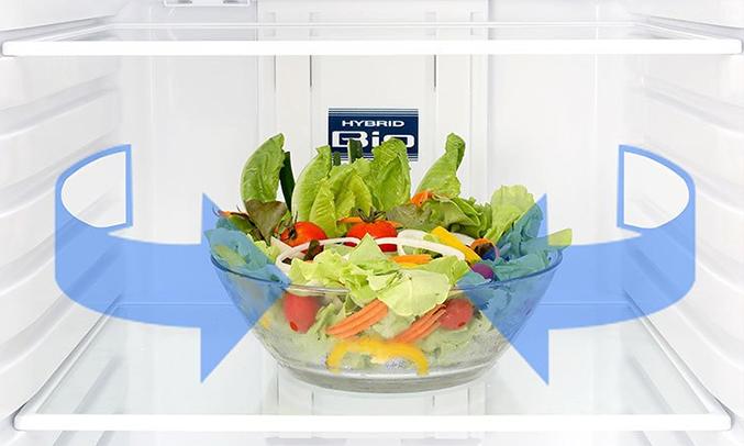 Tủ lạnh Toshiba 305 lít GR-MG36VUBZ (XK) diệt khuẩn