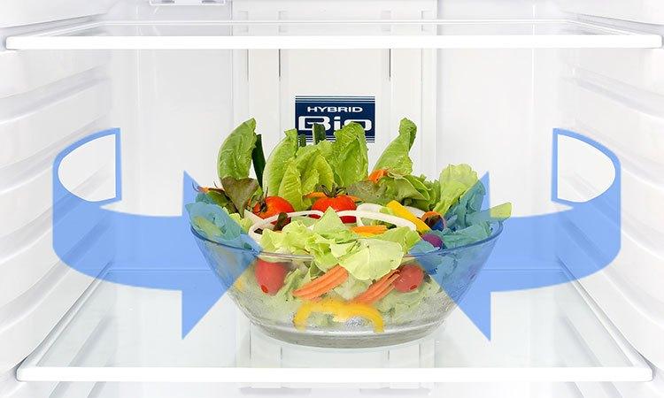 Tủ lạnh Toshiba 305 lít GR-MG36VUBZ (XK) kháng khuẩn, khử mùi vượt trội