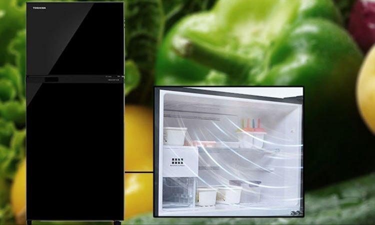 Tủ lạnh Toshiba GR-M28VUBZ(UK) 226 lít đen công nghệ làm đá đông nhanh chóng