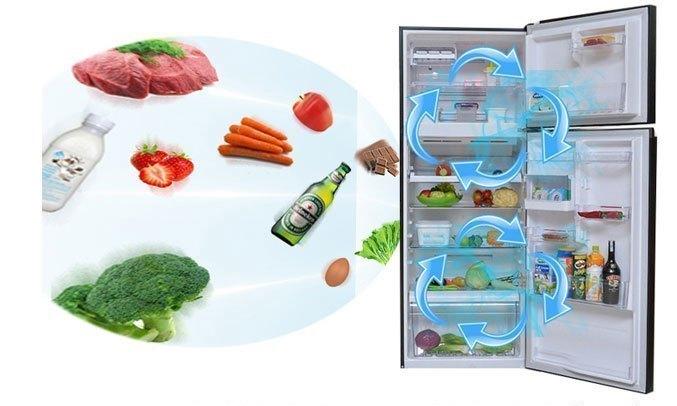 Tủ lạnh Toshiba GR-A28VU(UK) màu đen bảo quản thực phẩm tốt
