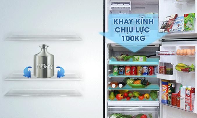 Tủ lạnh Toshiba Inverter 359 lít GR-TG41VPDZ khay kệ bền bỉ, linh hoạt