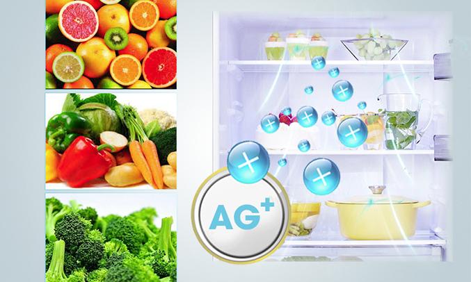 Tủ lạnh Aqua 505 lít AQR-IG595AM (GB) giá tốt