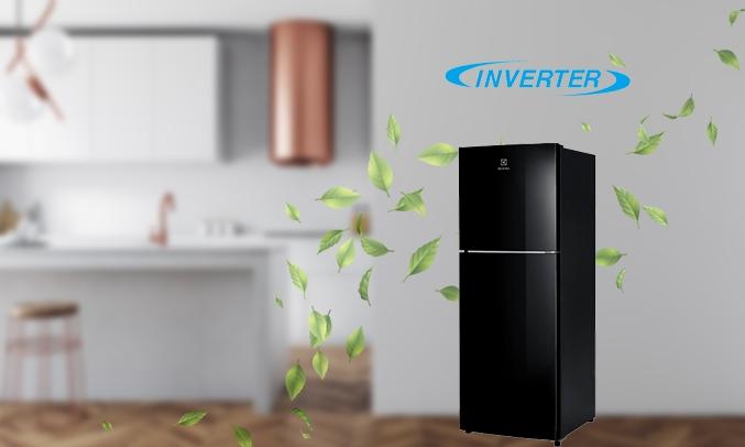 Tủ lạnh Electrolux Inverter 260 lít ETB2802J-H tiết kiệm điện