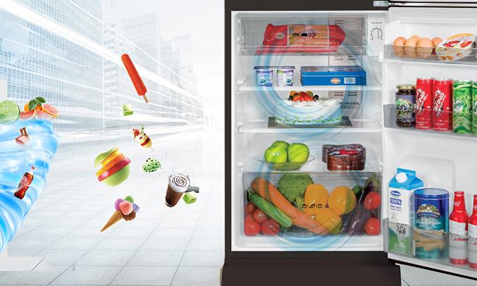 Tủ lạnh Aqua AQR-I190DN (DC) công nghệ diệt khuẩn, khử mùi